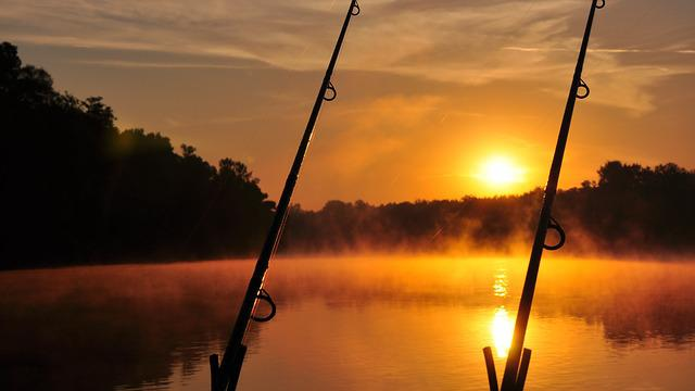 Dawn, River, Summer, Drava
