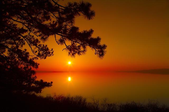 Sunset, Dawn, Wood, Silhouette, Day S, Lake Balaton