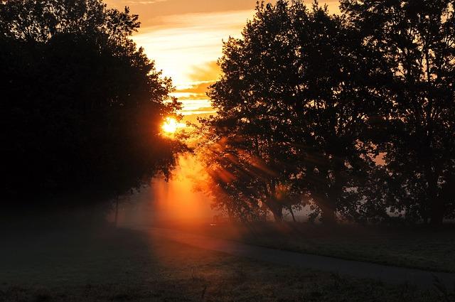 Autumn, Dawn, Back Light, Skies, Sunrise, Nature