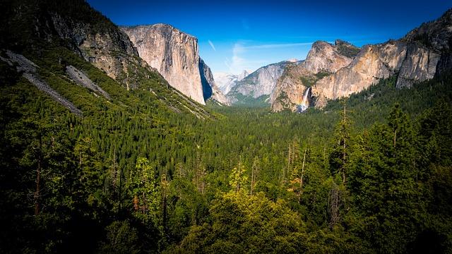 Cliffs, Conifer, Daylight, Evergreen, Fall, Forest