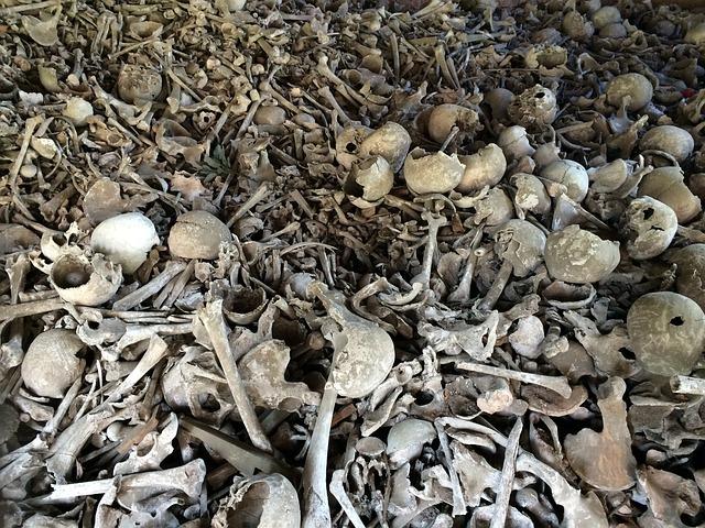 Bone, Skull, Bones, Weird, Skull And Crossbones, Dead