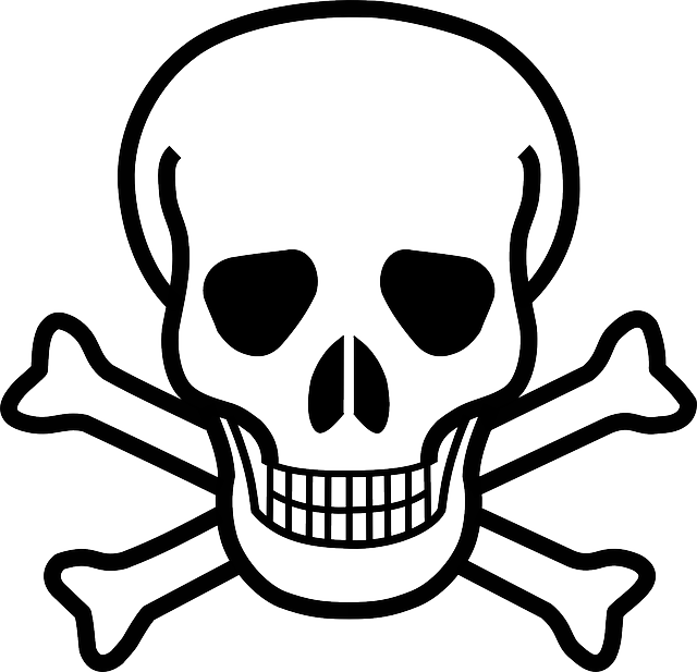 Skull And Crossbones, Skull, Crossbones, Danger, Death