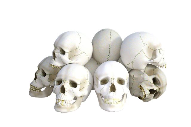 Skulls, Horror, Death, Halloween, Dead, Head, Grave
