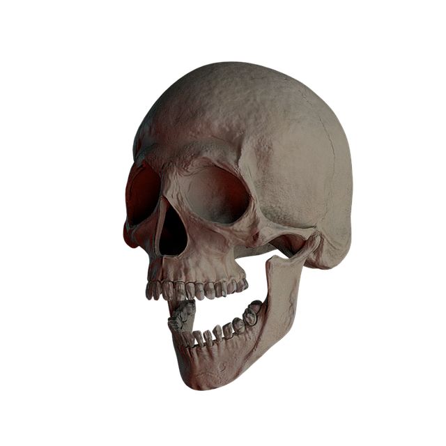 Skull, Skull And Crossbones, Bone, Creepy, Weird, Death