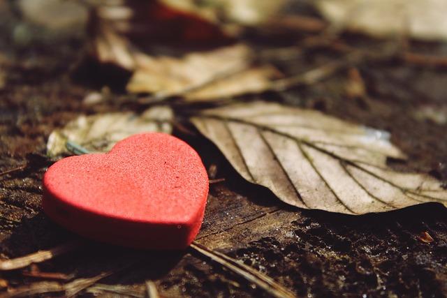 Heart, Love, Deco, Decoration, Decorative