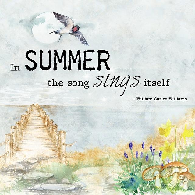 Quote, Decor, Watercolor, Summer, Bird, Motivational