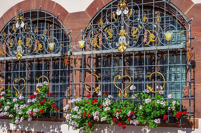 Flower, Geranium, Colorful, Window Grilles, Decorated