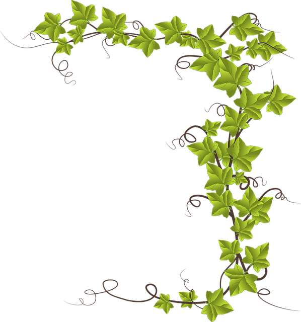 Alphabet Word Images, Decoration, Evergreen, Leaf