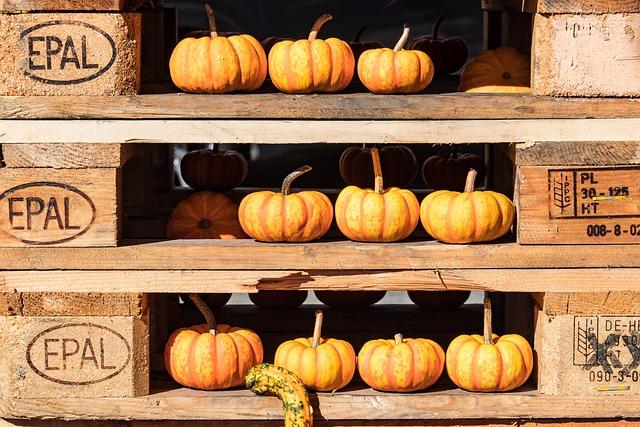 Pumpkin, Pumpkins, Decoration, Autumn Decoration