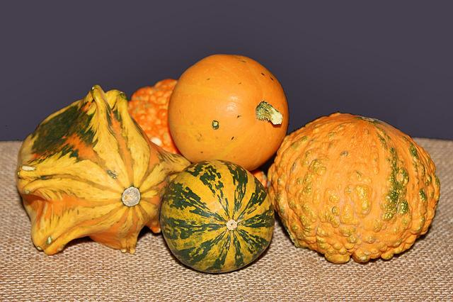 Pumpkins, Decorative Squashes, Autumn, Decoration