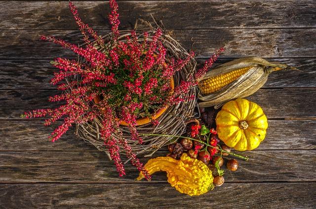 Halloween, Pumpkin, Decoration, Orange, Autumn, Deco