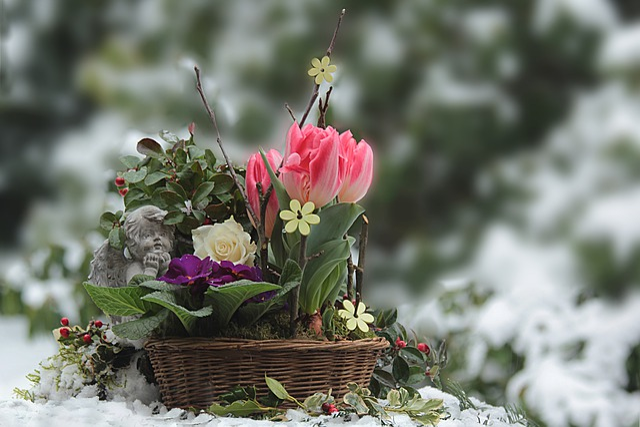 Flowers, Basket, Decoration, Spring Flowers