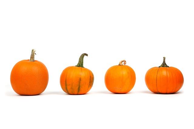 Autumn, Decoration, Fall, Food, Fresh, Freshness