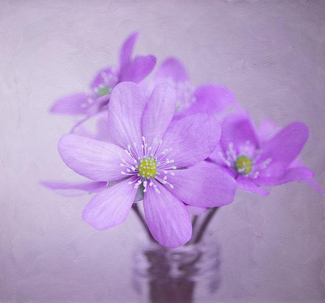 Image, Painting, Flowers, Hepatica, Deco, Decoration