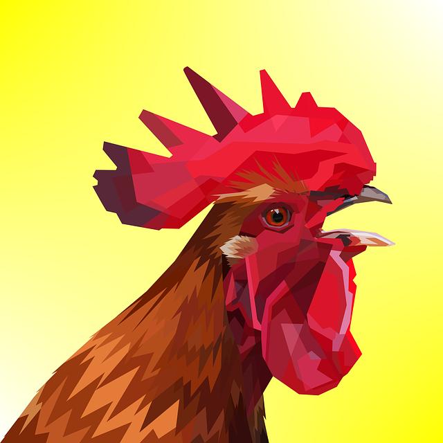 Animal, Decoration, Chicken, Design, Geometry, Nature