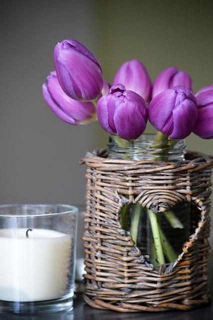 Nature, Flowers, Decoration, Live, Décor, Spring