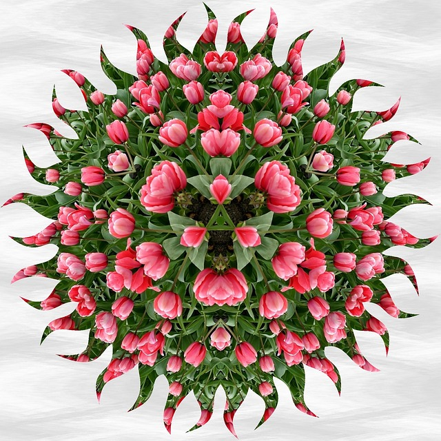 Mandala, Pattern, Tulips, Ornament, Decorative, Floral