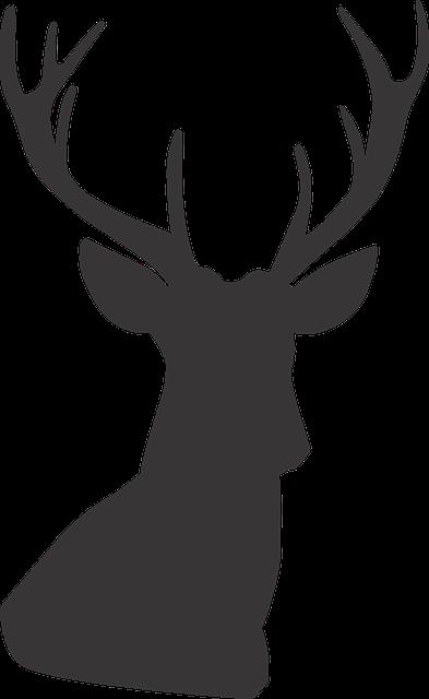 Deer, Deer Silhouette, Silhouette, Animal, Wild