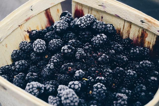 Berry, Blackberry, Close-up, Container, Delicious