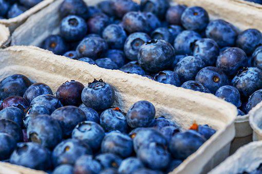 Blueberries, Fruits, Blue, Fruit, Delicious, Healthy