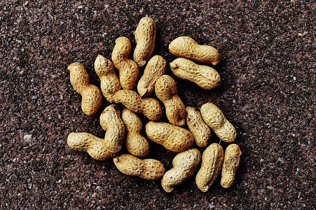 Peanuts, Shell, Food, Delicious, Nutrition, Peanut