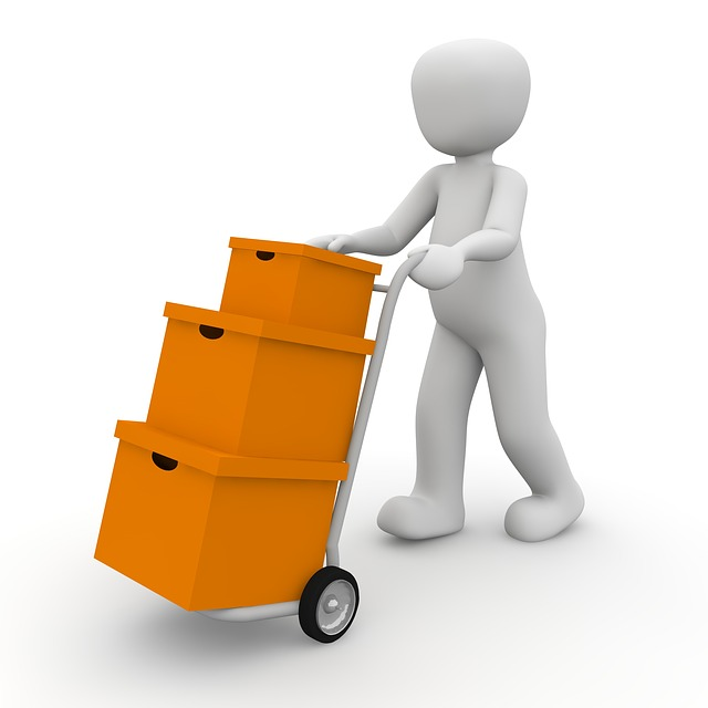Packages, Transport, Delivery Person, Messenger
