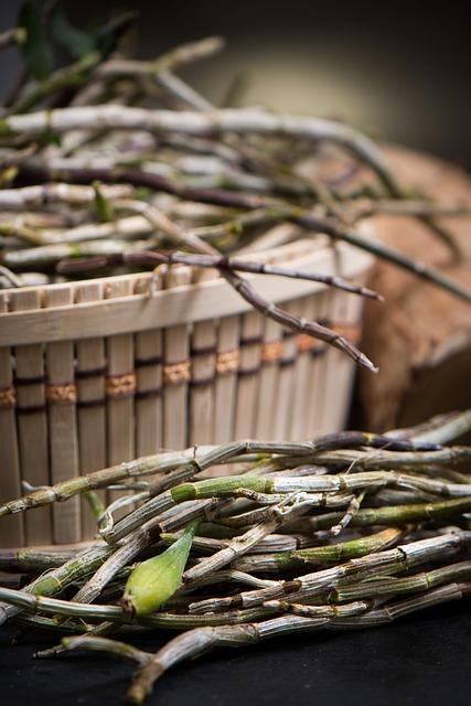 Dendrobium, Chinese Herbal Medicines, Food