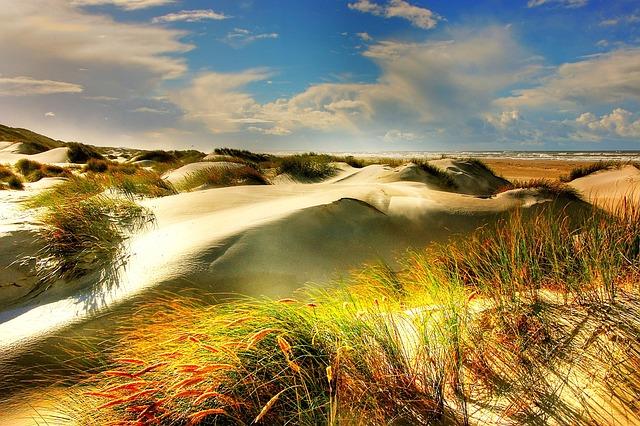 Dunes, North Sea, Beach, Denmark, Sea, Away