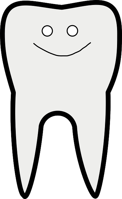 Tooth, Dental Care, Happy, Smiley, Smile, White, Teeth