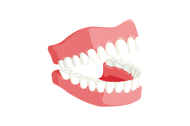 Teeth, Dentist, Mouth, Dentistry, Tooth, Care, Dental