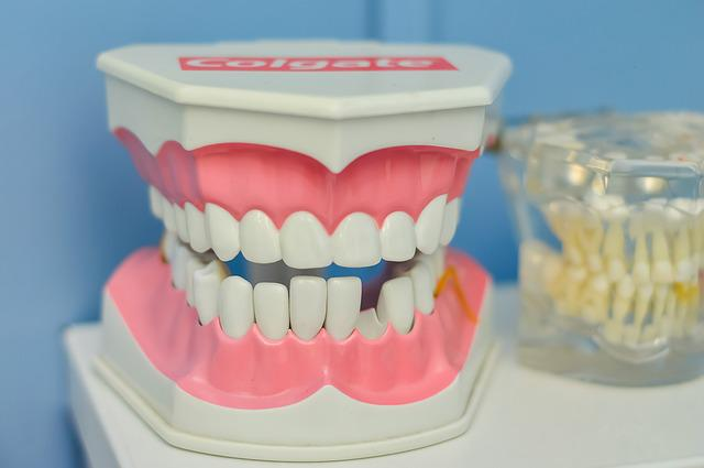 Mouth, Tooth, Macromodelo, Dentist