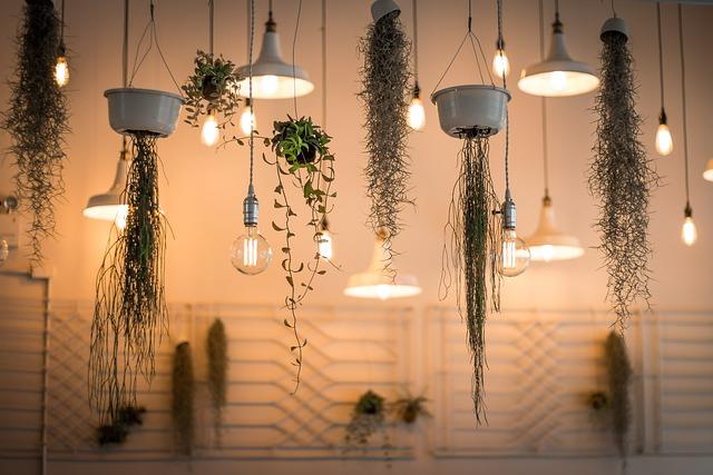Lights, Decoration, Depth Of Field, Hanging