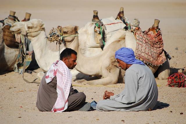 Desert, Camel, Africa