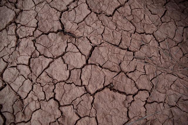 Drought, Earth, Desert