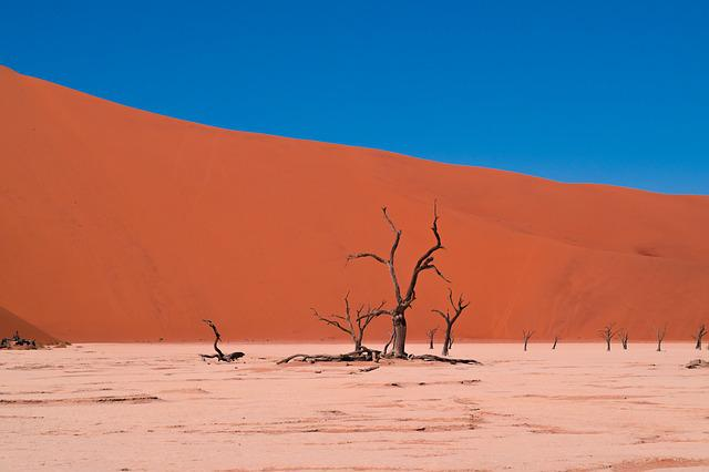 Arid, Barren, Desert, Drought, Dry, Hot, Landscape