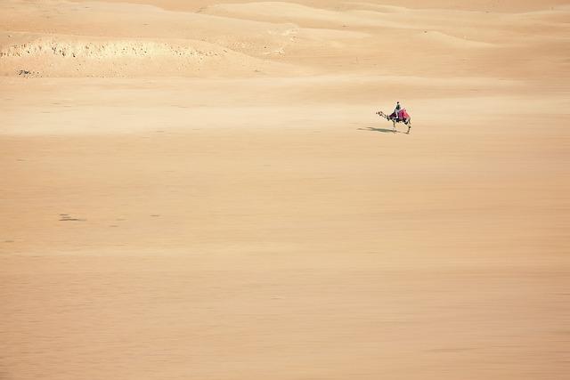 Sand, Camel, Desert, Cairo, Egypt, Transport, Africa