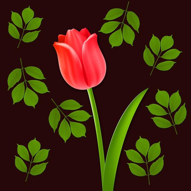 Flowers, Tulip, Flower, Background, Leaves, Design