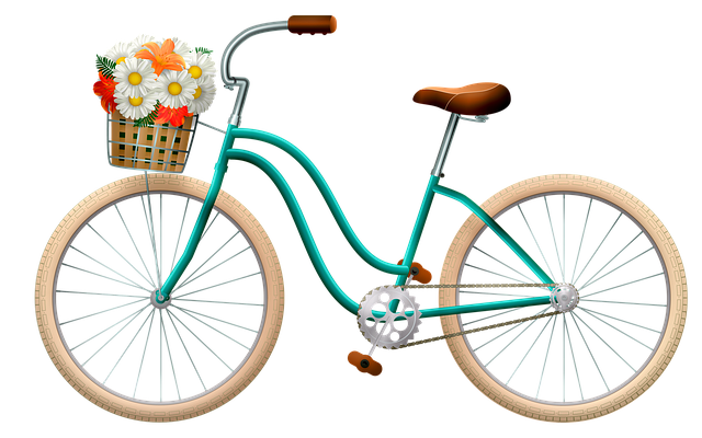 Bicycle, Basket With Flowers, Woman Bicycle, Design
