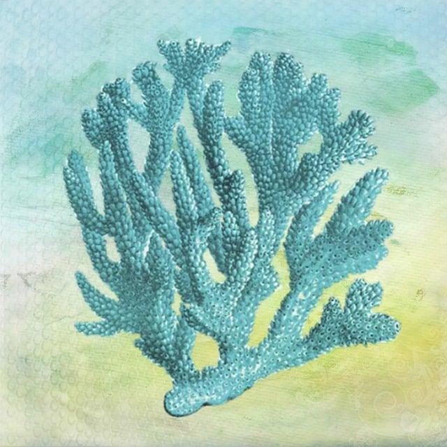 Coral, Design, Arts And Crafts, Blue, Vintage, Plant
