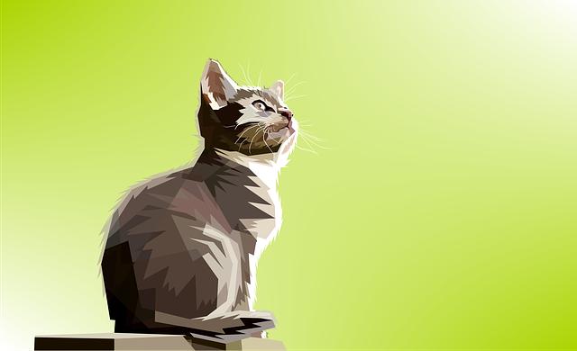 Animal, Decoration, Cat, Design, Geometry, Nature, Pop