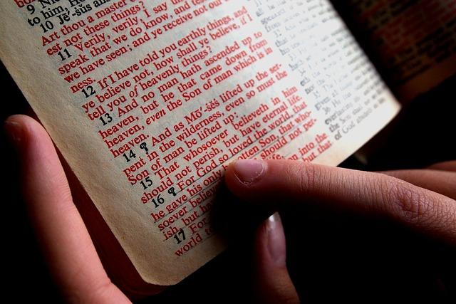 Bible, Hand, Designate, Read, Christian, Study