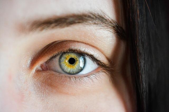 Eye, Iris, Macro, Natural, Girl, Eyebrows, Detailed