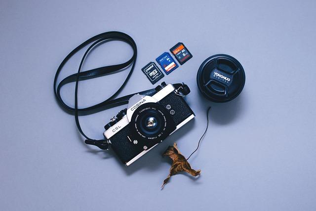 Camera, Camera Lens, Device, Dry Leaf, Electronics