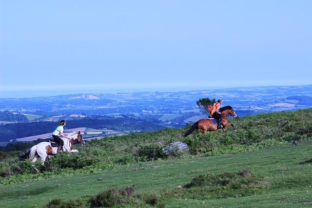 Horse Riding, Devon, Dartmoor