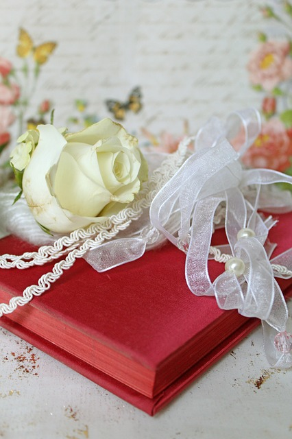 Diary, Red, Vintage, Shabby Chic, Romantic, Butterflies