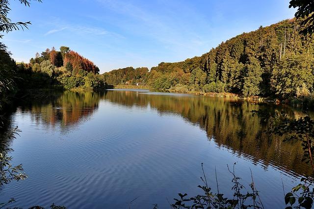 Dam, Reservoir, Diepental, Bach, Landscape, Water