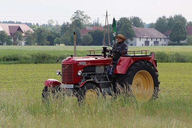 Tractor, Oldtimer, Tractors, Diesel