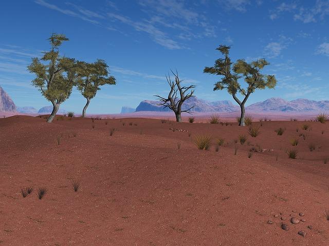 Background, Composing, Africa, Digital Art, Desert