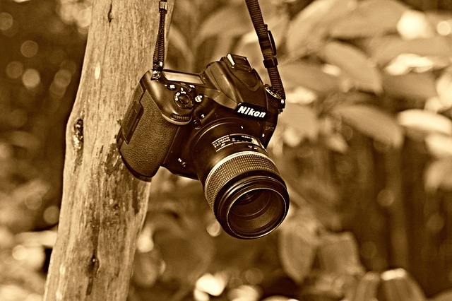 Digital Camera, Photography, Technology, Equipment