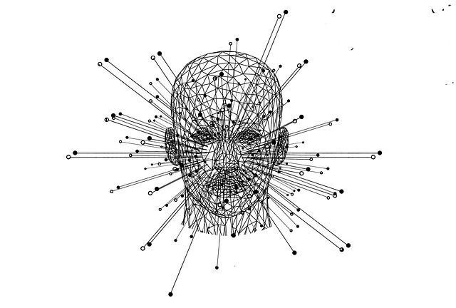 Web, Network, Head, Polygon, Computer, Digital